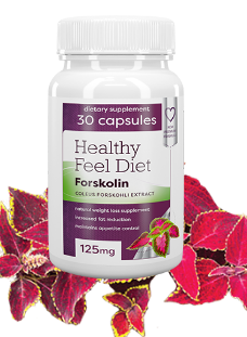 healthy feel diet - Buy